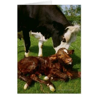 Vaca y becerro recién nacido tarjeta de felicitación