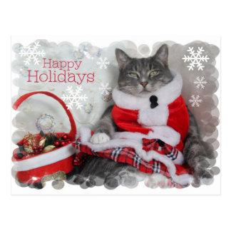 Vacaciones de invierno felices con el gato postales