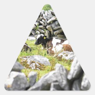 Vacas del MOO Pegatina Triangular