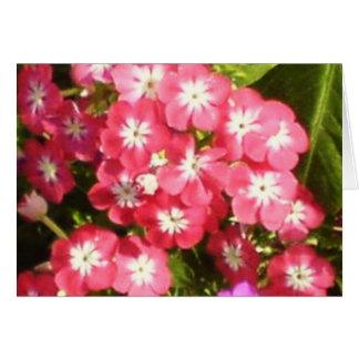 Valle de Badrinath de las flores 1 Tarjeta De Felicitación
