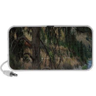 Valle de los pinos del río de la naturaleza laptop altavoz