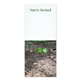 Valor de un árbol joven invitación 10,1 x 23,5 cm