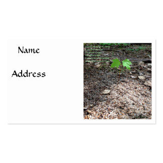 Valor de un árbol joven tarjeta personal