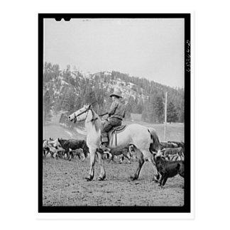 Vaquero 1940 de Montana Postales