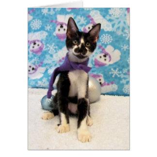 Vaquero, gatito, gato, navidad, rescate tarjeta de felicitación