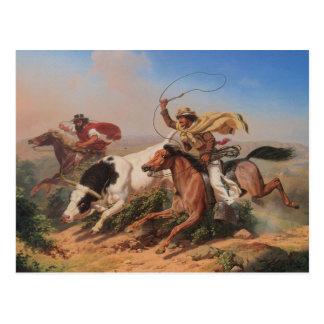 Vaqueros Roping un buey
