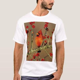 Varón cardinal septentrional encaramado, IL Camiseta