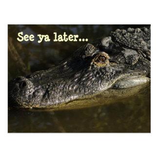 Vea el cocodrilo del ya más adelante… postal