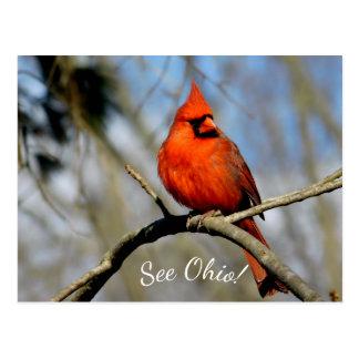 (Véase Ohio) postal cardinal