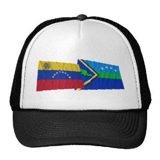 Venezuela y banderas que agitan de Amacuro del del Gorra