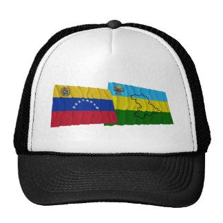 Venezuela y banderas que agitan de Anzoátegui Gorros