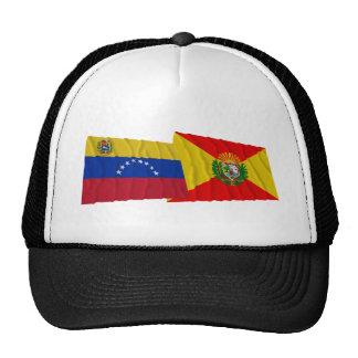 Venezuela y banderas que agitan de Aragua Gorro De Camionero
