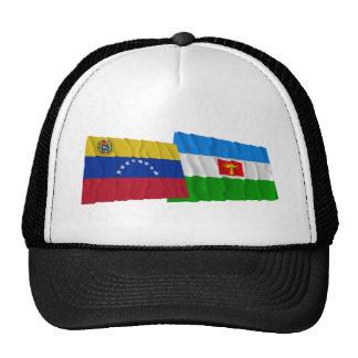 Venezuela y banderas que agitan de Barinas Gorras
