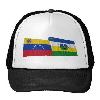 Venezuela y banderas que agitan de Guárico Gorro