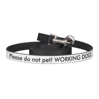 Ventaja del perro del servicio del veterano de los correa para perro
