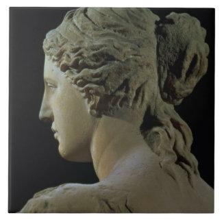 Venus de Milo, detalle de la parte posterior de la Teja