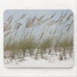 verano del americano de la hierba de la duna de la alfombrilla de ratón