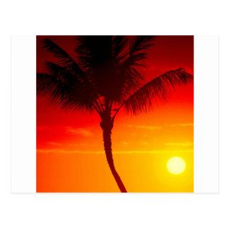Verano Maui Hawaii del calor del cielo Postal