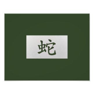 Verde chino de la serpiente de la muestra del fotos