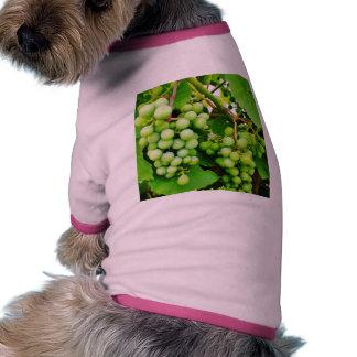 Verde de la vid camisas de mascota