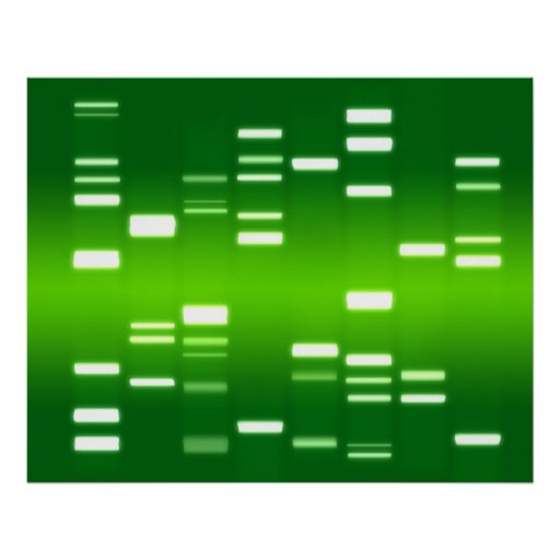 Verde del código genético de la DNA Póster