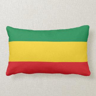 Verde, oro (amarillo) y bandera de los colores cojín lumbar