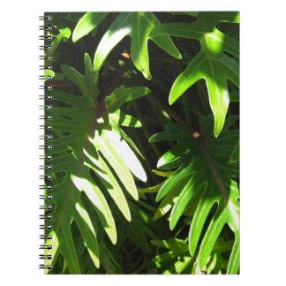 Verde tropical libros de apuntes con espiral