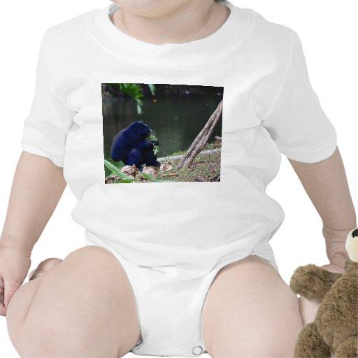 Verdes de la consumición del primate en el borde d traje de bebé