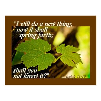 Verso de la biblia de Isaías 43 haré un nuevo Postal