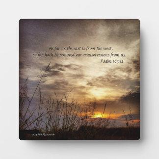 Verso de la foto y de la biblia del arte de la placa expositora