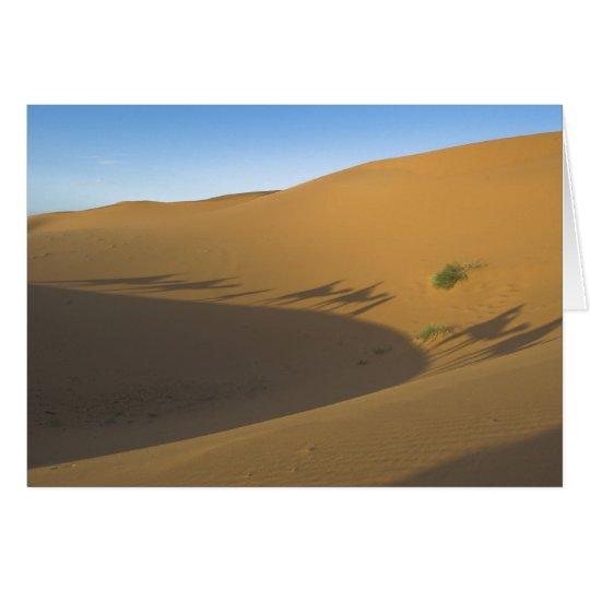 Viaje del camello tarjeta de felicitación