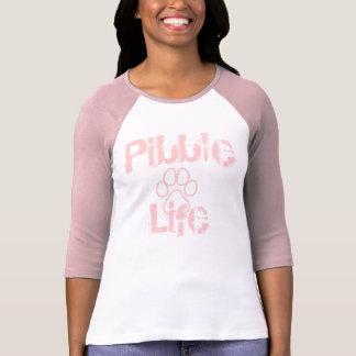 Vida de Pitbull cuatro Camisas