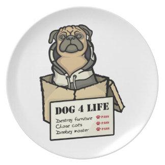 Vida del perro 4 plato de cena
