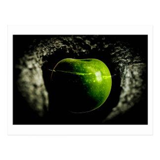 vida en la manzana postal