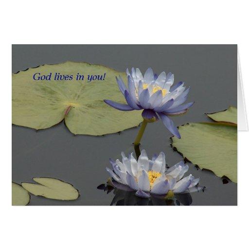 ¡Vidas de dios en usted! Tarjeta