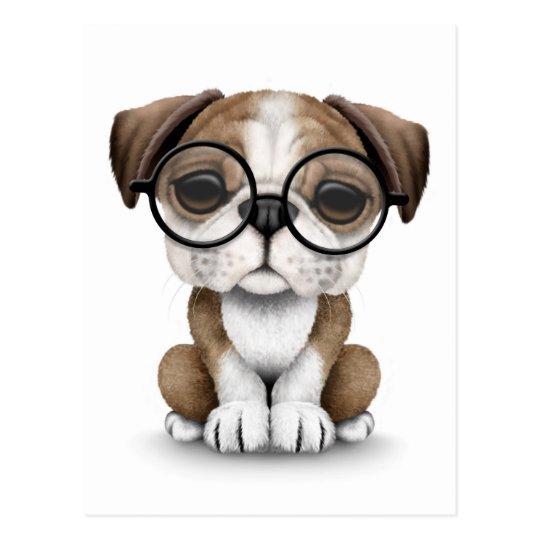 Vidrios que llevan del perrito inglés lindo del postal