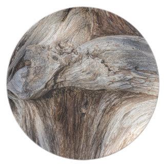 Vieja textura del árbol del barranco platos para fiestas