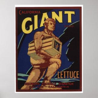 Viejas etiquetas gigantes del cajón de las verdura poster