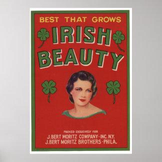 Viejas etiquetas irlandesas del cajón de la fruta  impresiones