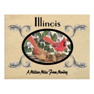 Viejo estado de Illinois de la postal de la