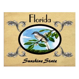Viejo estado de la Florida de la postal de la