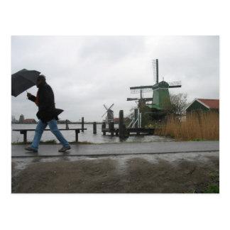Viento y lluvia en la postal de los molinoes de