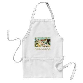Vintage Arkansas Delantales