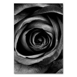 Vintage decorativo floral de la flor color de rosa