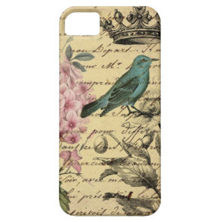 vintage femenino elegante París del pájaro del tru iPhone 5 Case-Mate Cárcasa