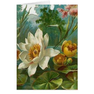Vintage, flor acuática, cumpleaños de la esposa tarjeta de felicitación