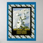 Vintage Ski Deportes de Nieve, Picos di Europa Póster