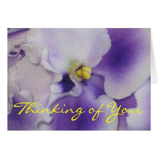 Violeta africana tarjetas
