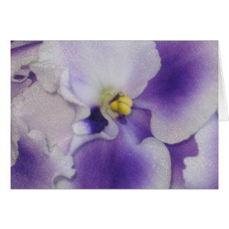 Violeta africana tarjeta de felicitación