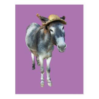 Violeta el burro en gorra de paja con las flores postal
